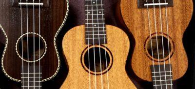 instrument ukulele