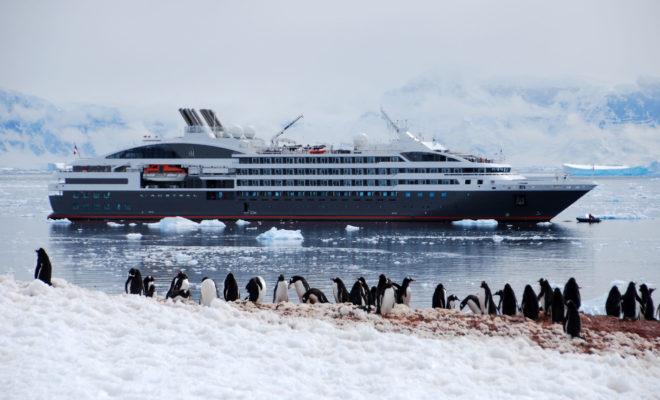 Quelle est la meilleure période pour un voyage en Antarctique