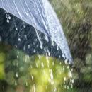 parapluie robuste