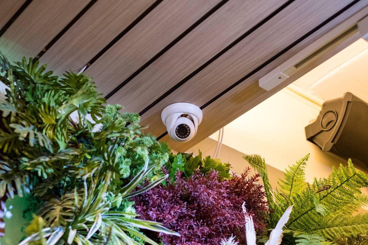 caméra dôme motorisé